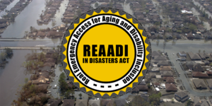 REAADI Logo with Flood
